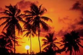 ハワイのホノルルにナンパ一期一会旅!