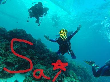 【フィリピン&セブ島】ナンパ一期一会遠征_セブ島滞在記(7・8日目)