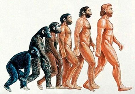 『出会いと思い出づくりがこんなに楽しいとは!』から学ぶ進化論ω・)b